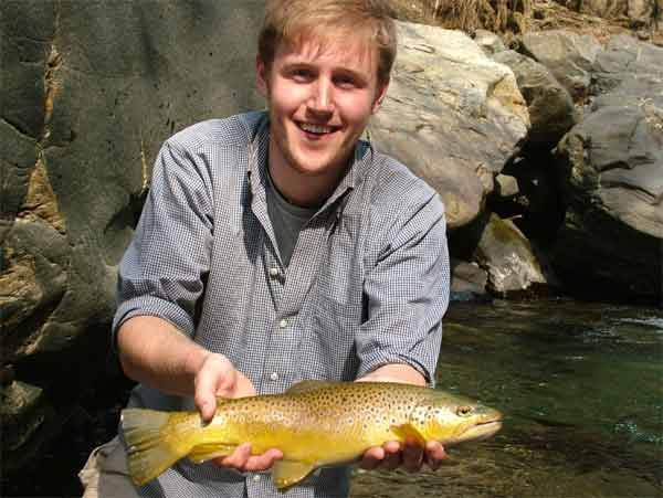Brown trout, Assi Ganga